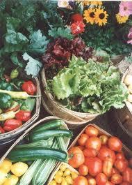 Mmm...fresh produce.